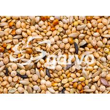 Garvo Tropical Gold 20 kg