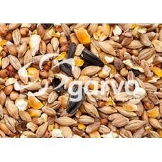 Garvo Gemengd Graan met Gebroken Mais en Zonnepitten 20 kg