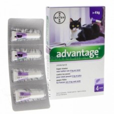 Advantage Kat (meer dan 4 kg)