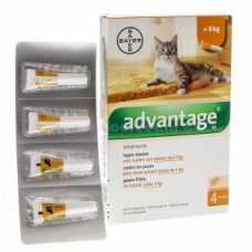 Advantage Kat (minder dan 4 kg)