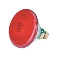 Lamp Infrarood 175 W