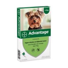 Advantage 40 (<4kg)