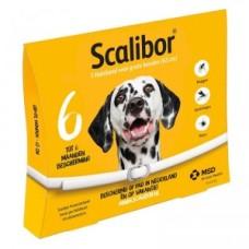 Scalibor Tekenband Large (65 cm)